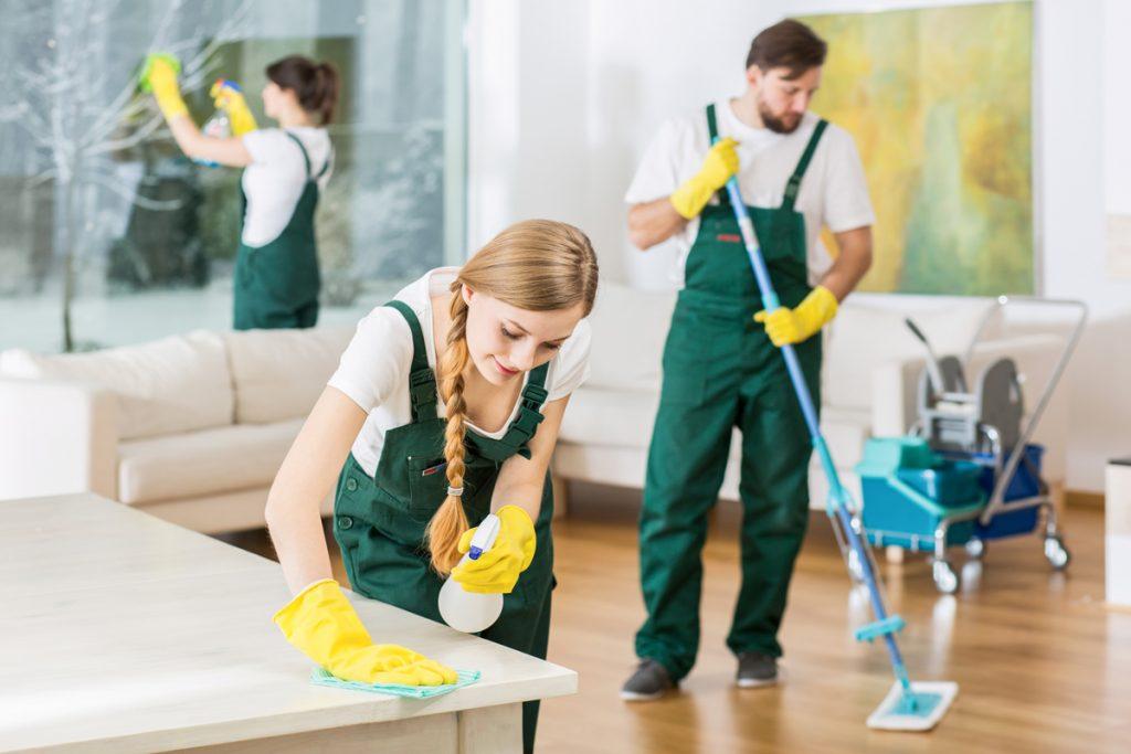 5 Offerten Wohnungsreinigung mit Abnahmegarantie einholen